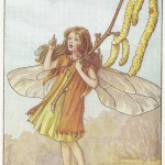 Flower Fairies Hazel-Catkin Fairy print old original vintage for sale