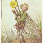 Flower Fairies Coltsfoot old vintage print available to purchase