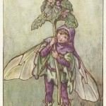 Flower Fairies Dead-Nettle Fairy for sale vintage original print