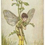 Flower Fairies Groundsel old man Fairy original old vintage for sale
