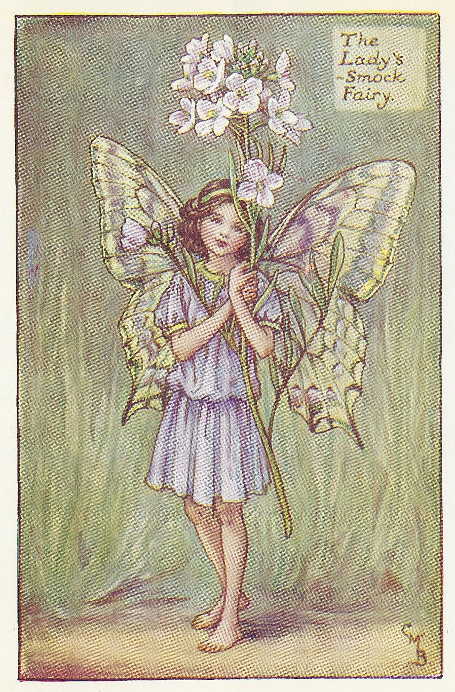 Spring Fairies Lady's Smock Fairy Print For Sale