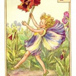 Flower Fairies vintage print of a Pansy Fairy by Cicely Mary Barker