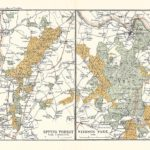epping forest antique map 1902