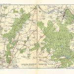 epping forest antique map 1910