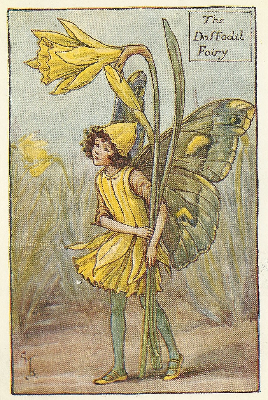 Daffodil Spring Fairy collectable vintage print